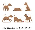 Stock vector vector dog staffordshire terrier set 738199531