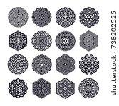 artistic decorative shape...   Shutterstock .eps vector #738202525