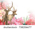 Winter Composition Deer With...