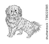 little pekingese dog vector by... | Shutterstock .eps vector #738223585