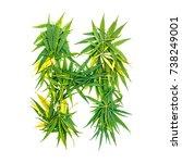 letter h made of green cannabis ...   Shutterstock . vector #738249001