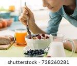 woman having an healthy...   Shutterstock . vector #738260281