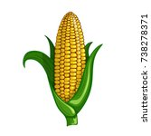 a cot of delicious sweet corn.... | Shutterstock .eps vector #738278371