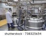male work the process of cream... | Shutterstock . vector #738325654
