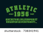 serif font with contour....   Shutterstock .eps vector #738341941