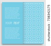 card  invitation  cover... | Shutterstock .eps vector #738342175