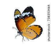 Stock photo beautiful flying butterfly plain tiger butterfly in natural color profile with fully wings 738353464