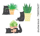 Stock vector cute funny cats playing with home flowers black cats in different poses and flower pots vector 738355657