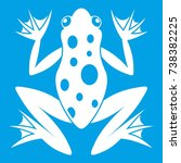 frog icon white isolated on...   Shutterstock . vector #738382225