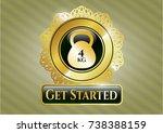 gold emblem with 4kg... | Shutterstock .eps vector #738388159