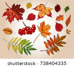 set of colorful autumn leaves | Shutterstock .eps vector #738404335