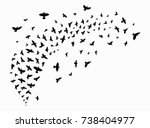 silhouette of a flock of birds. ... | Shutterstock .eps vector #738404977