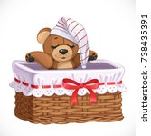 basket with teddy bear for... | Shutterstock .eps vector #738435391