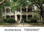 victorian house and trees in... | Shutterstock . vector #738505837