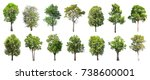 collection of isolated trees on ... | Shutterstock . vector #738600001