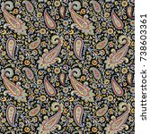 traditional indian paisley... | Shutterstock . vector #738603361