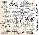 collection of calligraphic... | Shutterstock .eps vector #738608959