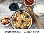 oat flakes with milk  honey ... | Shutterstock . vector #738645445