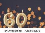 gold number 60 celebration... | Shutterstock . vector #738695371