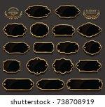 retro vintage golden frames... | Shutterstock .eps vector #738708919