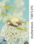 Beautiful spring blossoms with nest and egg in the background. Extreme shallow DOF. - stock photo