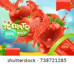 tomato vegetables. splash of... | Shutterstock .eps vector #738721285