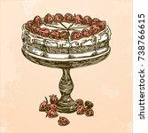 strawberry cake with fresh... | Shutterstock .eps vector #738766615