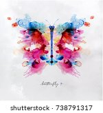 monotype colorful butterfly... | Shutterstock . vector #738791317
