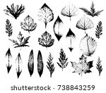 realistic highly detailed... | Shutterstock .eps vector #738843259