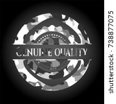 genuine quality on grey... | Shutterstock .eps vector #738877075