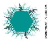 hexagon fern frond frame vector ... | Shutterstock .eps vector #738881425