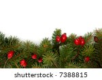 red rose hips and green spruce... | Shutterstock . vector #7388815