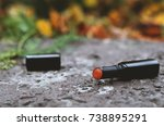 pomade lies on ground | Shutterstock . vector #738895291