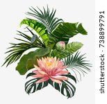vector vintage composition with ... | Shutterstock .eps vector #738899791