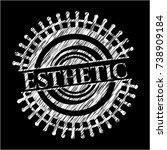 esthetic chalkboard emblem... | Shutterstock .eps vector #738909184