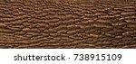 embossed texture of the bark of ... | Shutterstock . vector #738915109