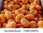 Mini Orange Pumpkins Fall...