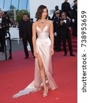 cannes  france. may 17  2017 ...   Shutterstock . vector #738953659