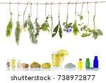 various ingrdient s . preparing ... | Shutterstock . vector #738972877
