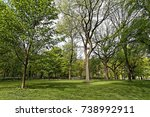 central park  nyc | Shutterstock . vector #738992911