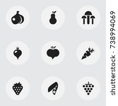set of 9 editable berry icons....
