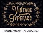 vector vintage decorative font... | Shutterstock .eps vector #739027357