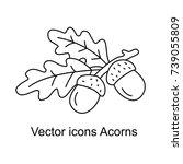 icon of acorns. vector... | Shutterstock .eps vector #739055809