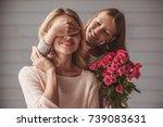 pretty teenage daughter is... | Shutterstock . vector #739083631