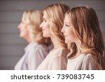 side view of beautiful women... | Shutterstock . vector #739083745