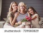 beautiful women generation ... | Shutterstock . vector #739083829