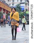 chongqing nov. 4  2014. fancy... | Shutterstock . vector #739097725