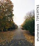 autumn landscape   Shutterstock . vector #739139761