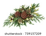 winter greenery decoration with ... | Shutterstock . vector #739157209