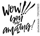 wow  you are amazing hand drawn ... | Shutterstock .eps vector #739159855